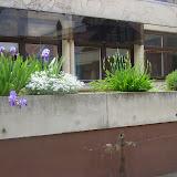 Képek az iskoláról - image016.jpg