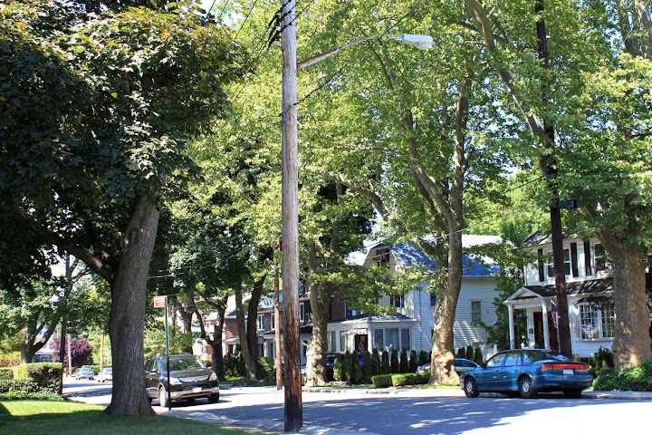 Homes in Castleton Corners, Staten Island