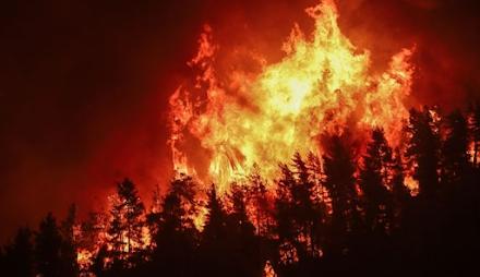 Φωτιά στη Νέα Μάκρη Αττικής : 4 οι εστίες της πυρκαγιάς - Που έχει διακοπεί η κυκλοφορία