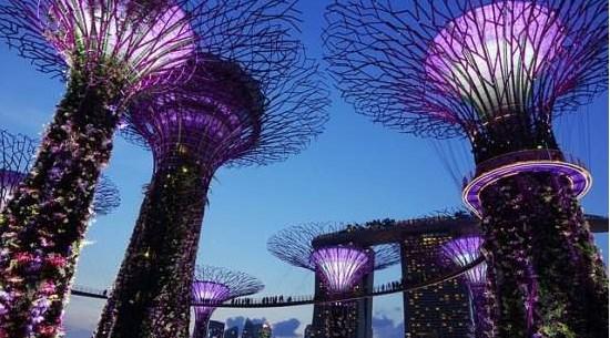 Fakta Singapura yang Menarik Untuk Menambah Wawasan  16 Fakta Singapura yang Menarik Untuk Menambah Wawasan