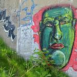 Green Head.jpg