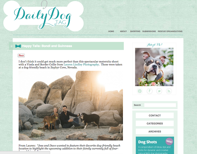 Published work from Lauren Lindley at the Daily Dog Tag