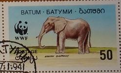 timbre Batum 001