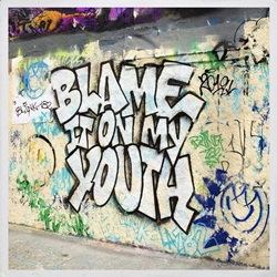 Blink 182 – Blame It On My Youth download grátis