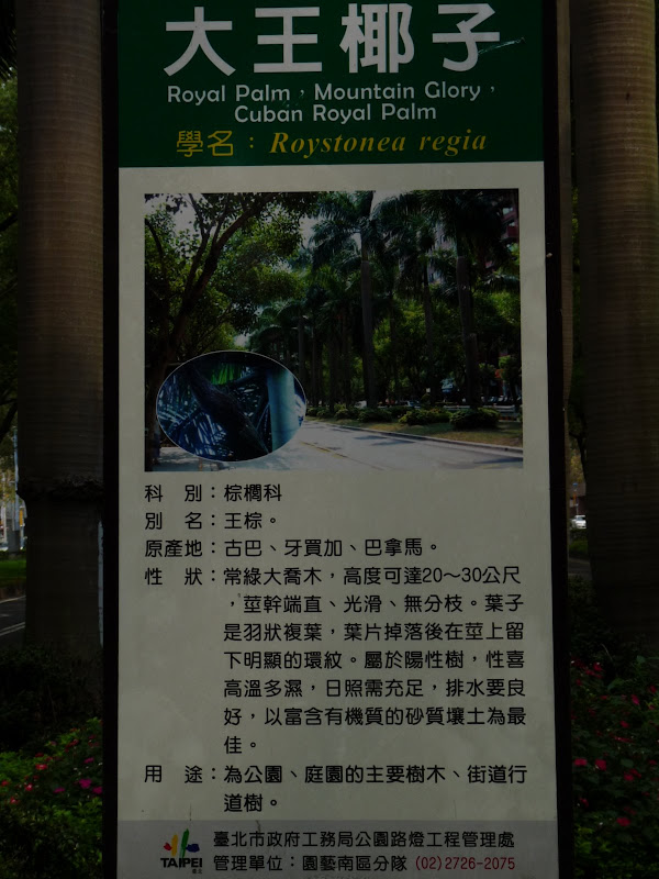 TAIWAN . Taipei De Shandao Temple jusqu à T 101 à pied... - P1160268.JPG
