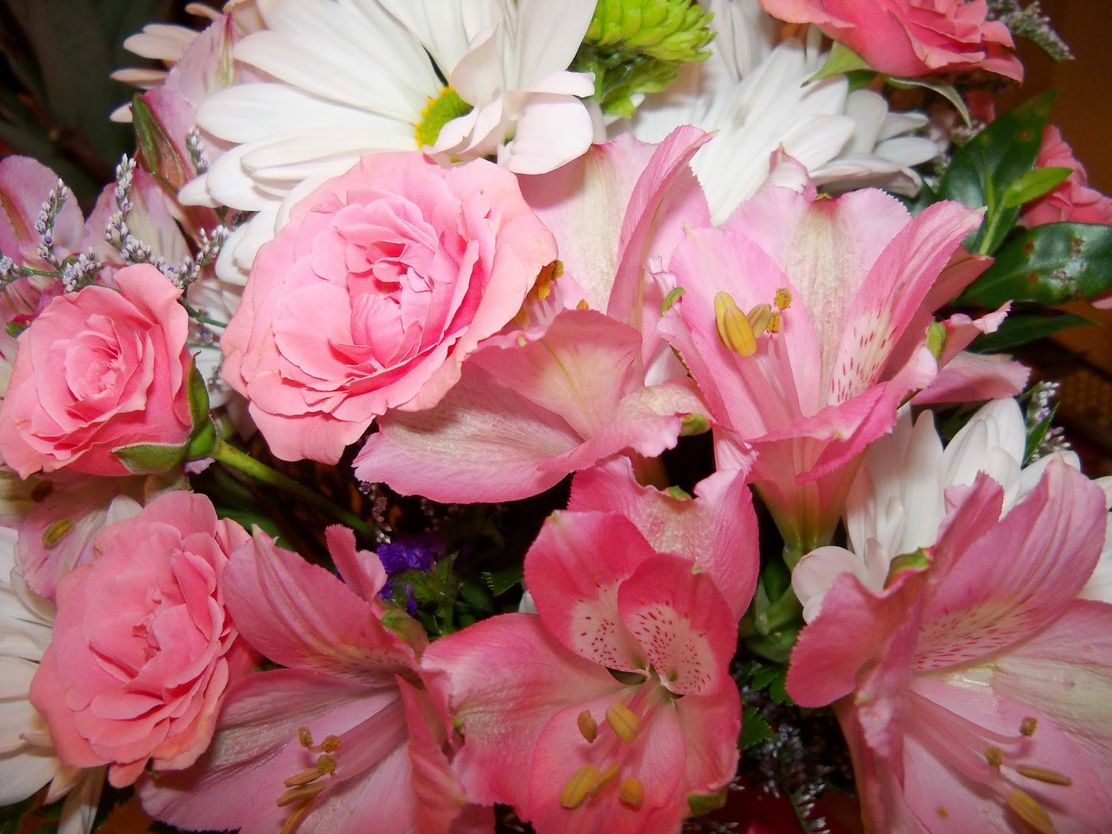 Mothers Day 2014 - 116_1788.JPG