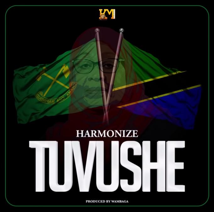 AUDIO: Harmonize – Tuvushe | Download