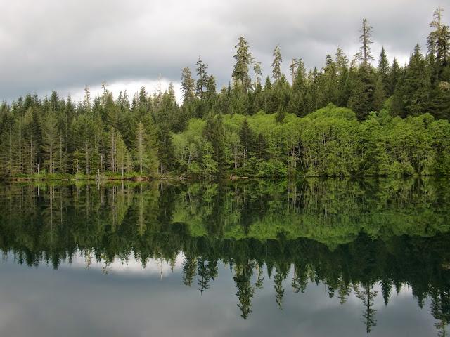 May 2014 Wynoochee Lake Camp/Canoe - CIMG5235.JPG