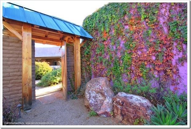 151230_Tucson_Tohono-Chul-Park_0035