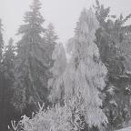 Zimovanje_19_2_056.JPG