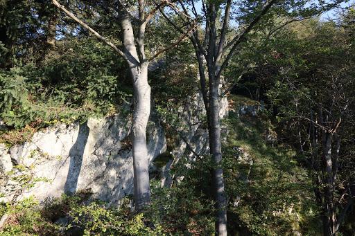 Skaly na hrebeni Suchého vrchu