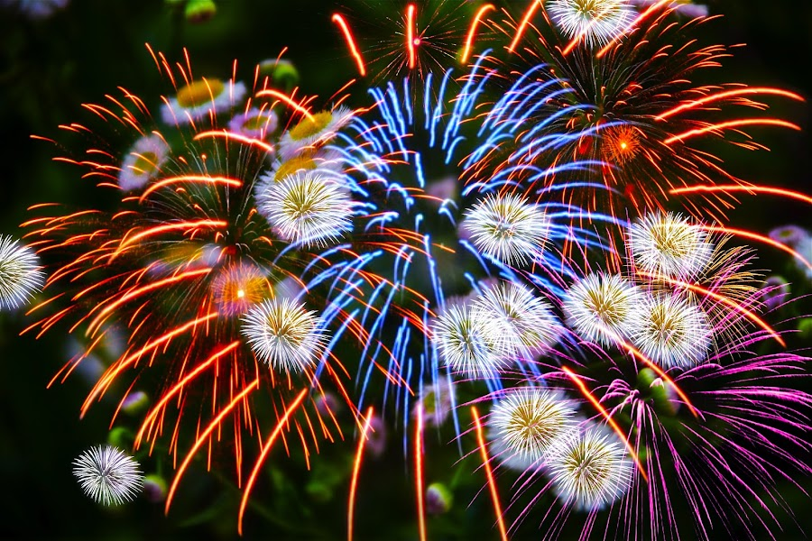 by Alice Gipson - Abstract Fire & Fireworks ( pwcfireworks, alicegipsonphotographs, fireworks )