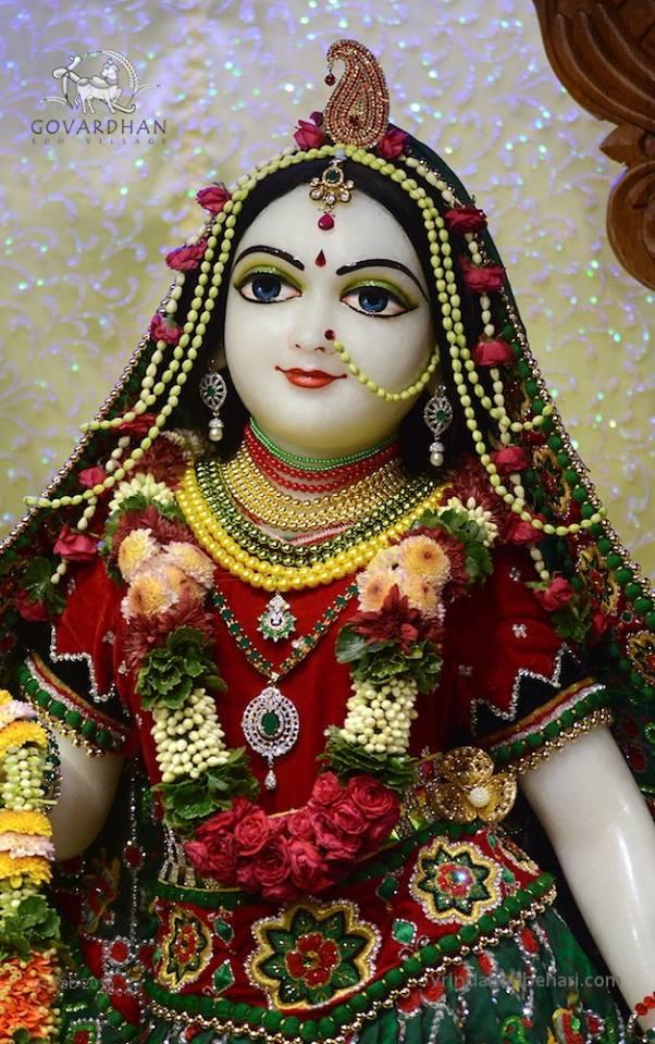 ISKCON GEV (Wada) Deity Darshan 01 Feb 2016  (10)