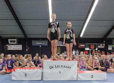 Han Balk Gelderland 2016-8480.jpg