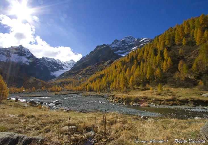 2015-10-11_Chiareggio-Porro_Valmalenco_081