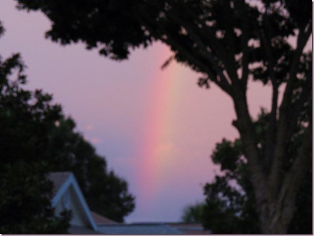 rainbowIMG_7601