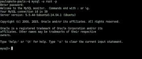 Imagem exemplo prompt do MySQL