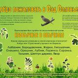 Прочитайте задание и поищите ответы в Интернет и на экологической тропе