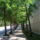 Dallas Fort Worth vacation - 100_9703.JPG