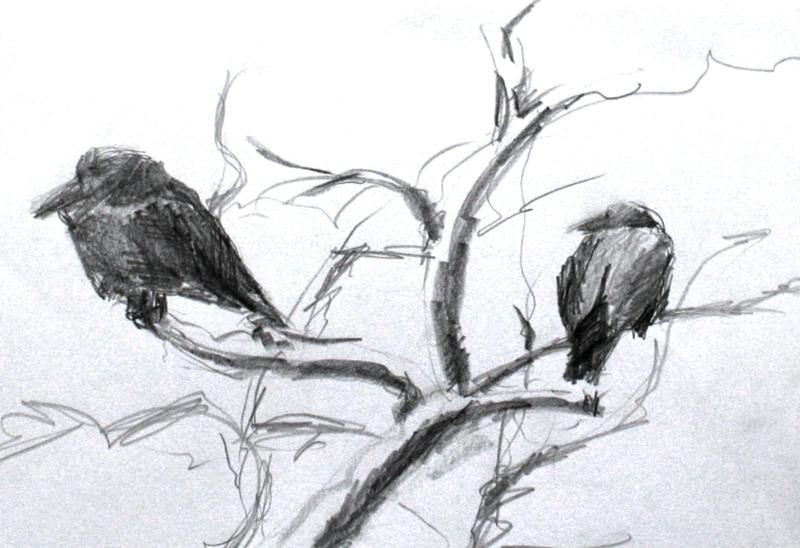 Ptaki Szybki Szkic Z Pleneru