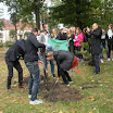 tn_Święto Drzewa 10.10.2016 048 (11).jpg