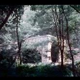 dia060-031-1965-tabor-bakony-ii.jpg