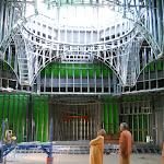 Swami Prapannananda gazes into the dome