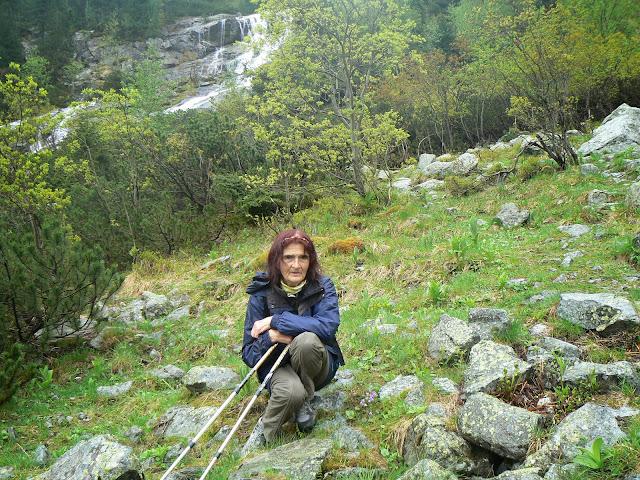 Zajęcia terenowe w Tatrzańskim Parku Narodowym - P1610617.JPG
