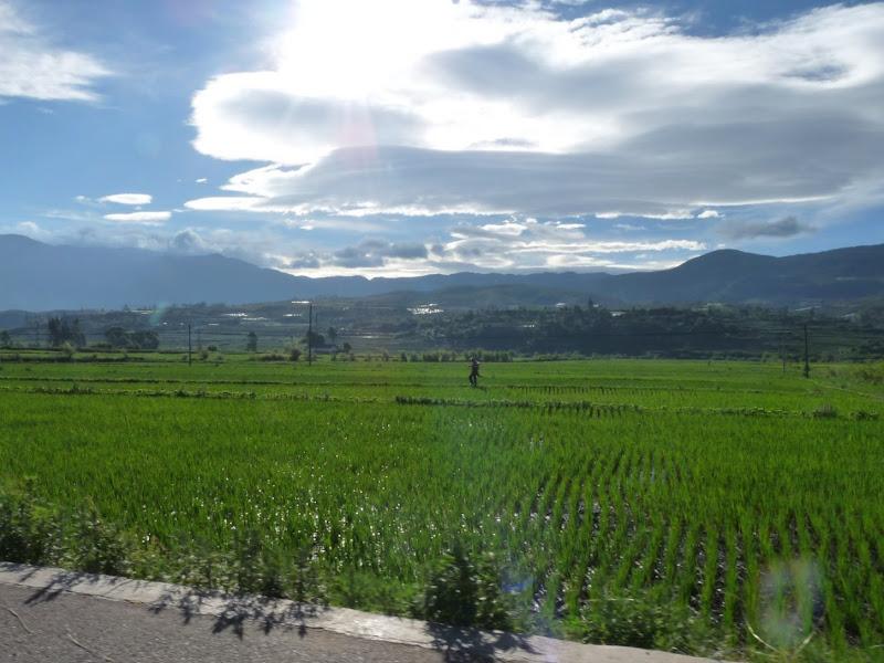 Chine . Yunnan.SHA XI 2 et retour à Lijiang - P1250245.JPG