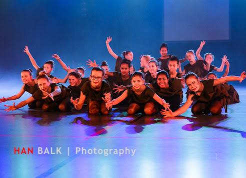 Han Balk Voorster Dansdag 2016-3313-2.jpg