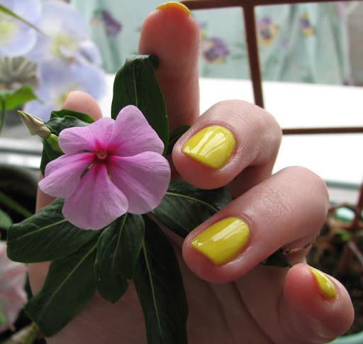 Желтые ногти после лака