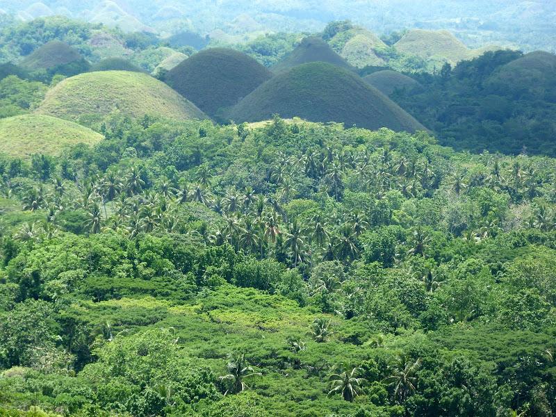 Bohol et Panglao - philippines1%2B1366.JPG