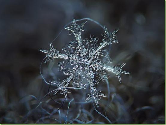 natural snowflake1
