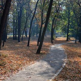 by OL JA - City,  Street & Park  City Parks