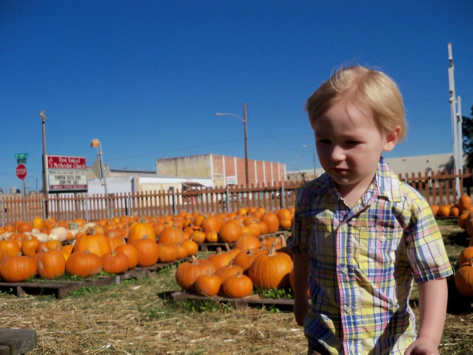 Pumpkin Patch 2014 - 116_4400.JPG