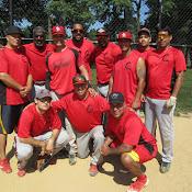 Cardinals 2014