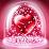 hany ziada's profile photo