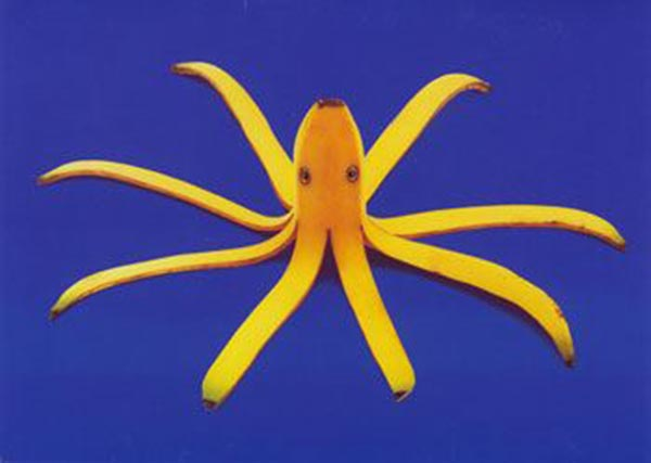 Food Art - Banana Octopus