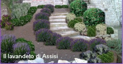 Progetti giardini privati progetti balconi e terrazzi