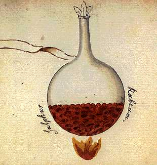The Red Sulphur From Cabala Mineralis Manuscript, Hermetic Emblems From Manuscripts 1