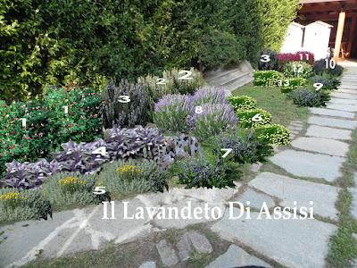Angoli di giardino e idee per realizzare aiuole foto for Piccoli giardini ornamentali