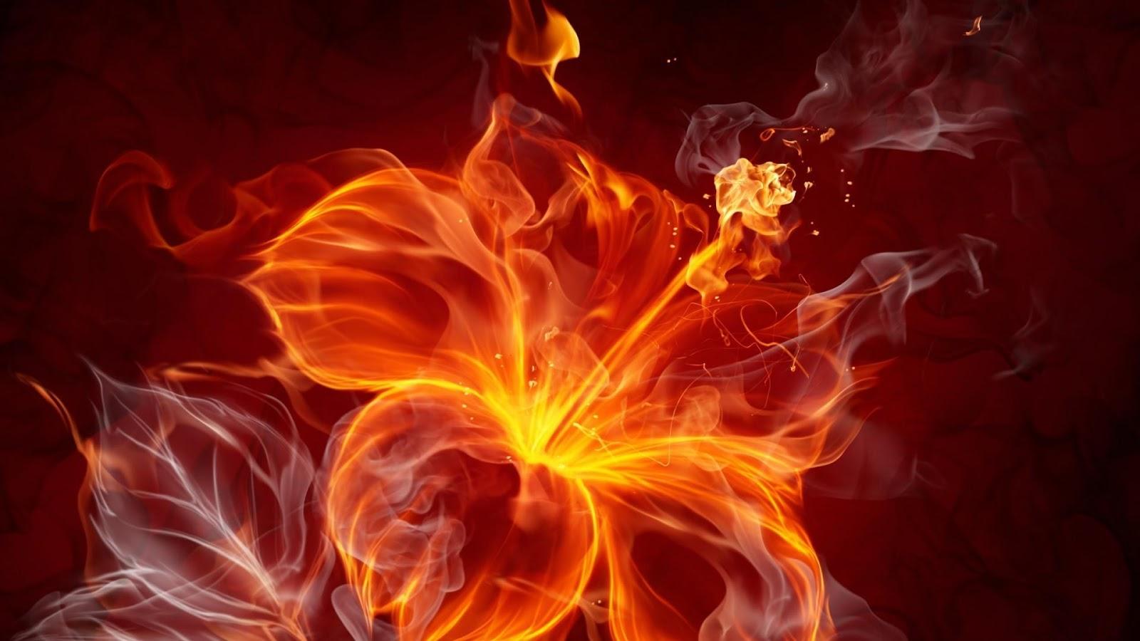 Cool Fire Wallpapers HD Screenshot