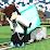 minden minecraft's profile photo