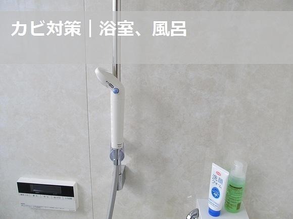 浴室のカビ対策