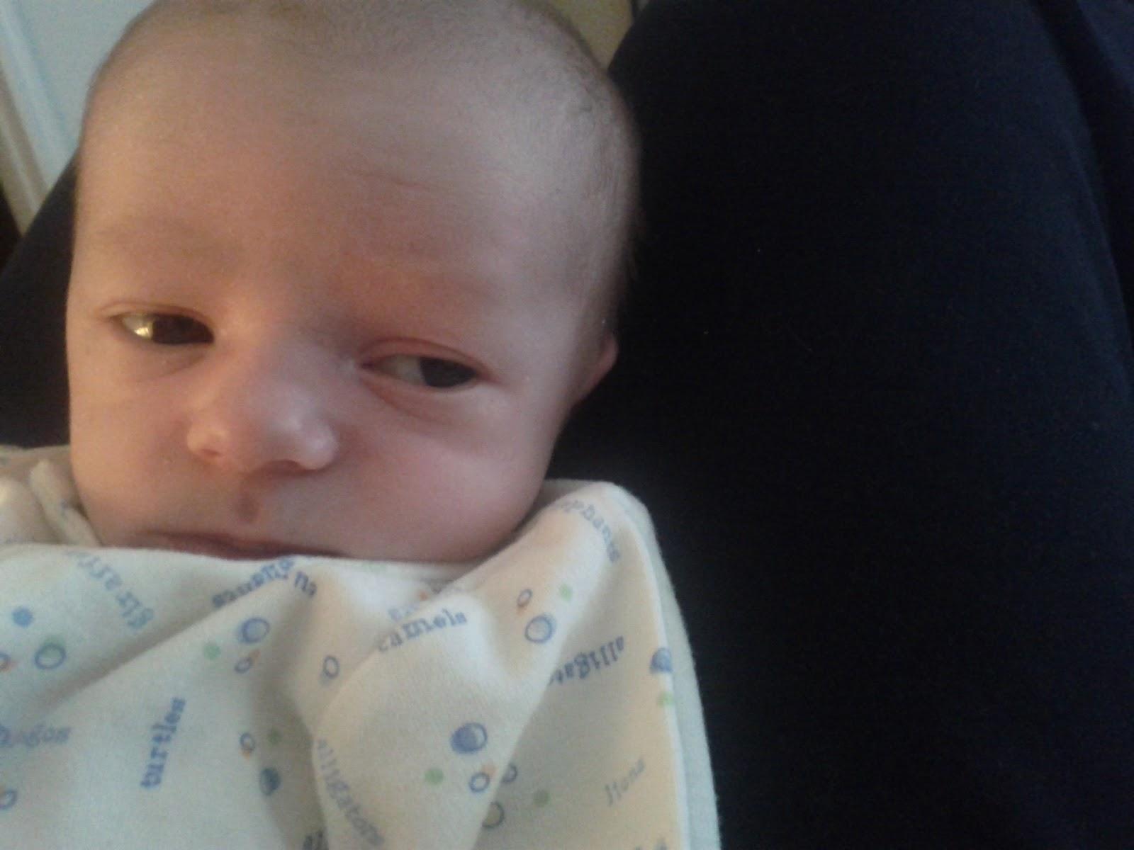 Meet Marshall! - IMG_20120531_141215.jpg