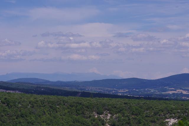 La Montagne de Lure depuis les Hautes-Courennes (550 m), Saint-Martin-de-Castillon (Vaucluse), 22 juin 2015. Photo : J.-M. Gayman