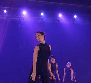 Han Balk Voorster dansdag 2015 avond-4816.jpg