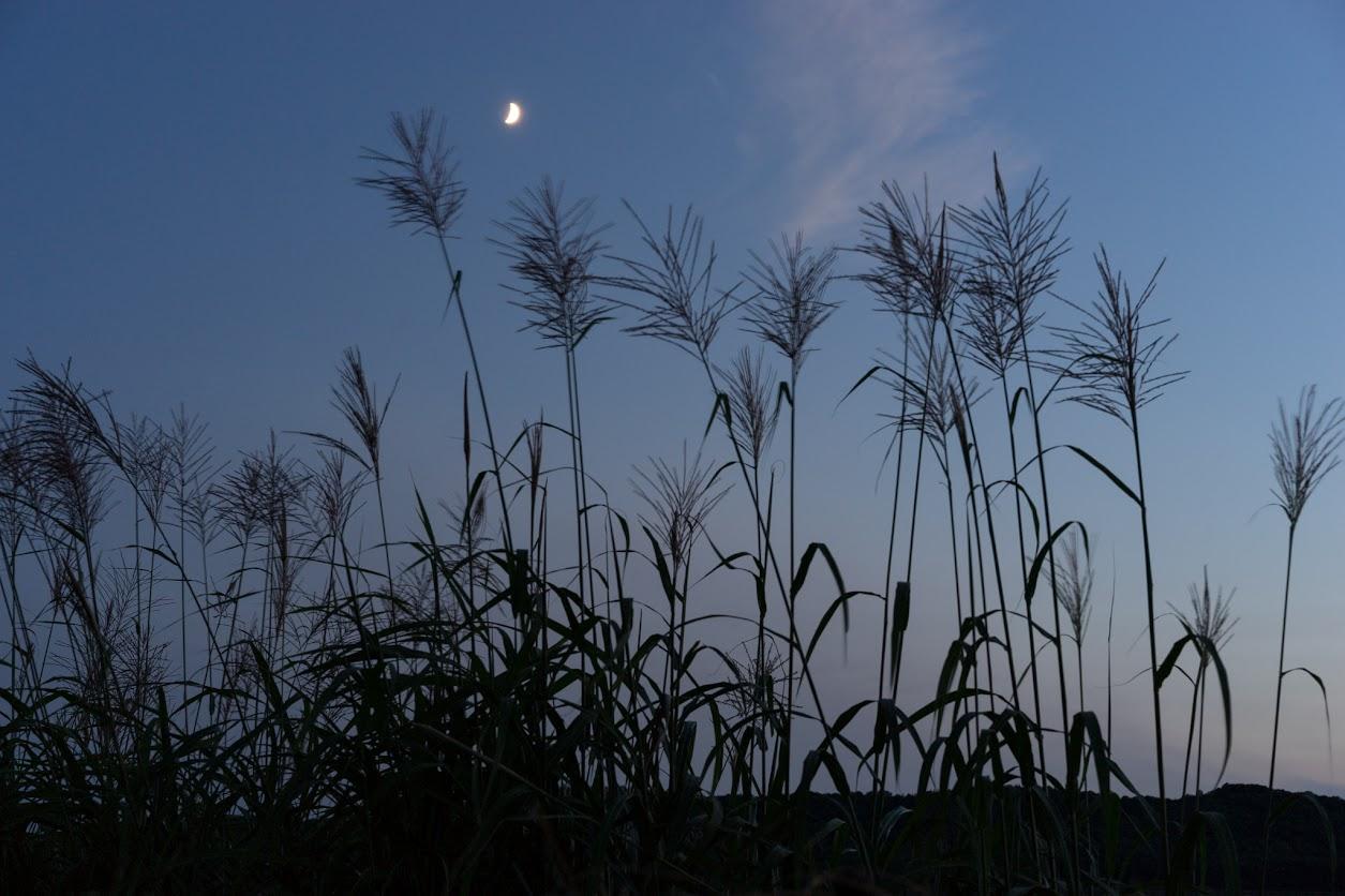 日没の空に浮かぶ白い月