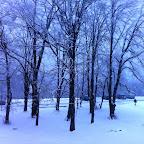 Der erste Schnee 2014