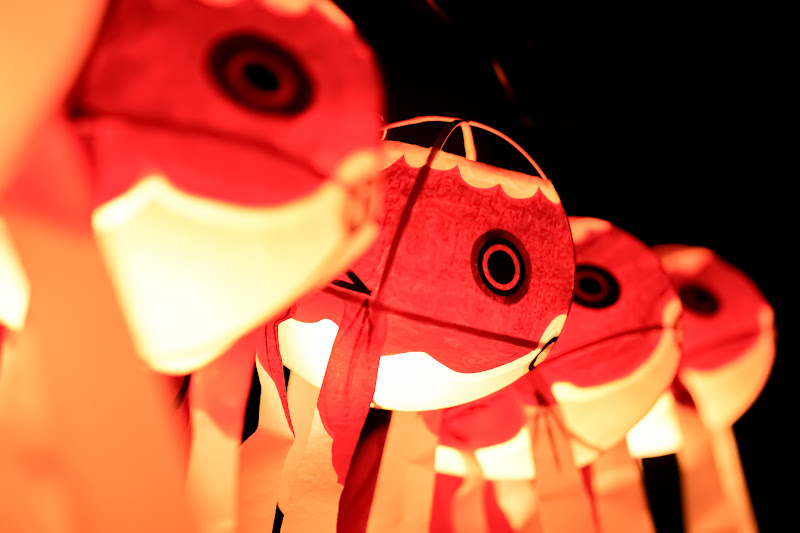 目黒雅叙園 和のあかり百段階段 柳井 金魚 ちょうちん 写真3